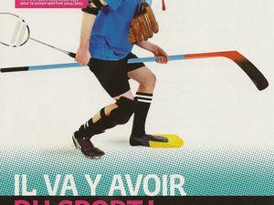 Mode d'emploi d'attribution des chèques sports mis en place par la région Bretagne...cliquez sur les photos.