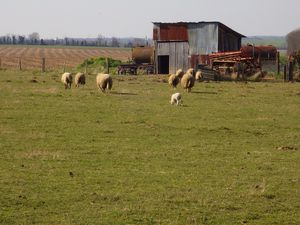 une ferme à Crespières  et l'autre à Davron