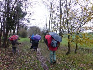 Capes et parapluies de rigueur !