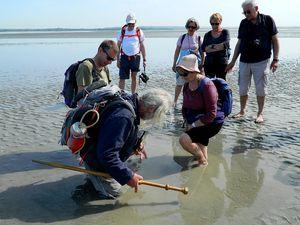 mais un peu impressionnants les sables mouvants ! Marie Cécile a osé, bravo !!!