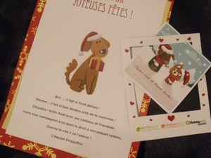 La Doggybox Decembre 2013 &quot&#x3B;Joyeux Noël 2013&quot&#x3B;