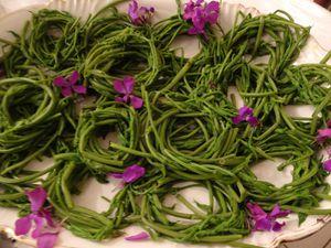 Les jets de Houblon cuits en asperges sont un met très raffiné mais il deviennent toxiques lorsque leurs feuilles se développent.