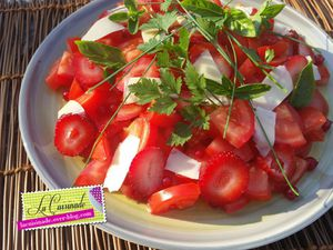 Salade Rosso aux Herbes Folles