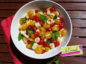 Salade de Tomates bicolores Coeurs de Palmier