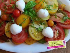 Trio de tomates mozzarella basilic