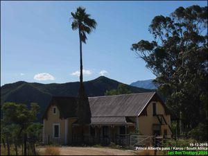 Afrique du Sud - 6 - Wild Coast et Garden Route