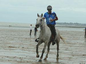 Graine de champion à Uzès en 2011 et trois ans plus tard aux Jeux Equestres Mondiaux en Normandie