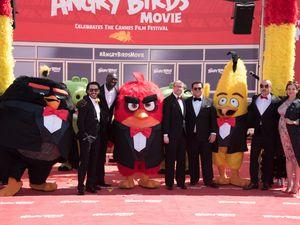 ANGRY BIRDS débarque à Cannes