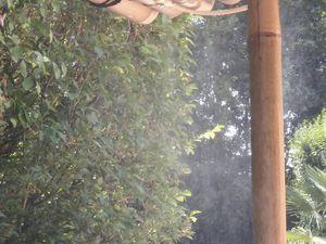 La brume d'ici vaut mieux que l'eau de là!