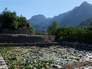 Puig de Migdia le 11 Juillet à 7h21 -- Le oranges variété Valencia late -- Vues sur Soller -- Un ancienne noria