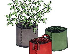 nouveaux models Root Pouch : les pots géotextiles à hautes croissances racinaires.