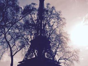 Paris en janvier