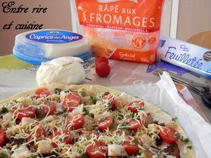 Tarte fine au Cabillaud, Tomates cerise, Champignons et Mozzarella + Proposition ECOPHIL