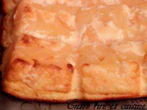 Gâteau au Fromage blanc, Citron et à l'Ananas