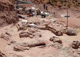 photo Stringer (Argentine), seconde photo : un paléontologue allongé près du fémur,