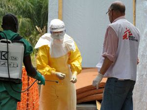Le Virus Ebola, Explications