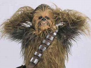 Star Wars, Chewbacca, Peter Mayhew