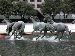 Les Mustangs de la colline, &quot&#x3B;The mustang of las Colinas&quot&#x3B;, Robert Glen, Texas, USA