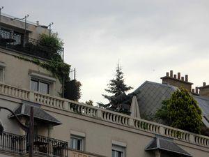 Le Terrass Hôtel