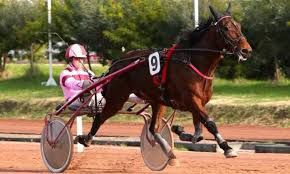 4 septembre 2016 -   CRAON  C-4 —- TROT