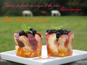 Salade de fruits du verger et des prés! Pommes, mûres sauvages, pêches blanches et vignes Jaclyne www.cuisineetgourmandise.fr