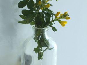 Des fleurs, là où on ne les attend pas...