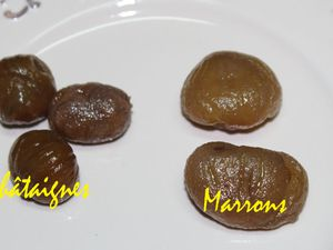 LES MARRONS CONFITS ET GLACES