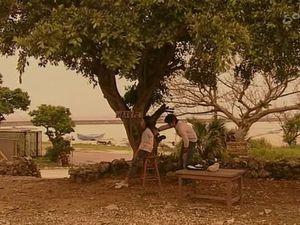 [Un autre genre d'île paradisiaque] Ruri no Shima  瑠璃の島