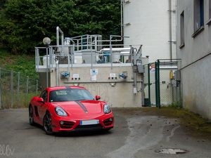 Porsche Cayman 981 : baby 911