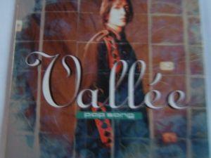 vallée, une chanteuse française qui se fit connaitre en 1994 avec l'album &quot&#x3B;pop songs&quot&#x3B;