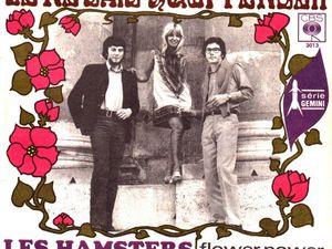 les hamsters, un groupe psychédélique, freakbeat, garage, mod et français de ces belles années1960