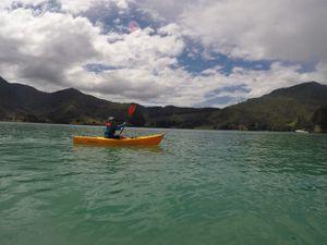 Randonnée et Kayak  ~ Kenepuru Sound  ~ Nouvelle Zélande