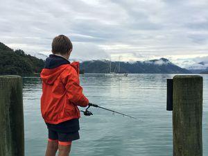 3 jours en famille dans les Marlborough Sounds ~ Nouvelle Zélande
