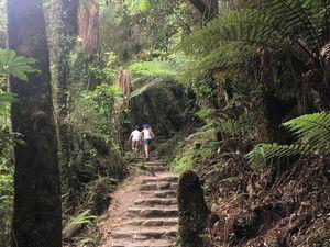 Randonnées en famille autour de Motueka ~ Nouvelle Zélande