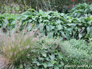 La fête des  plantes de Genech ... séquence nostalgie.