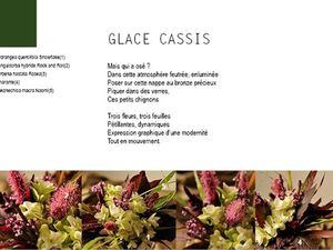 Livre numérique &quot&#x3B;Fleurs du Jardin - Les créations&quot&#x3B; de Sylvie Fontaine