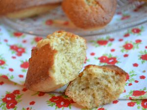 Madeleines rustiques