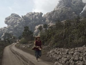 Sinabung - à gauche, la nuée ardente du 01.02.2014 - photo Reuters - à droite, photo de la nuée par P.Barois / via La Voix du Nord - un clic pour agrandir