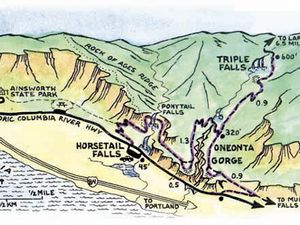 Trails maps in the Oneonta Gorge - a click to enlarge.