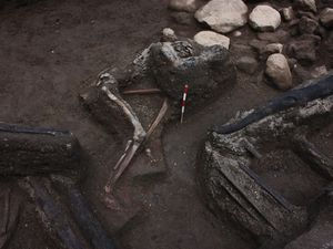 Skeletons of people of Tambora caught in a pyroclastic flow - a click to enlarge - Images Rik Stoetman