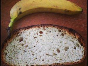 Plusieurs tranches de pain (dont une XXL selon ma représentation  de la tranche de pain.)