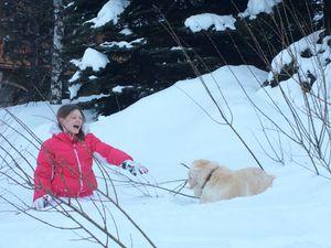 Lola à la neige...