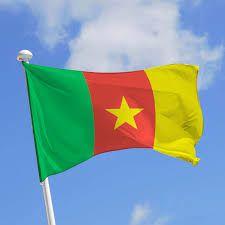 COMMUNIQUE DE PRESSE  : Le Forum Citoyen pour l'Alternance et l'Alternative au Cameroun en mai 2015