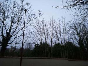 Mirebeau au Couchant : ciel du Mercredi  1er Janvier à 16H30 - Au levant : ciel du Jeudi 2  janvier à 8H30.