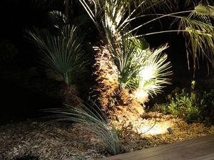 Eclairage de jardin . Paysagiste Vannes - Baden - Morbihan