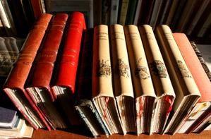 Gwrizienn (Librairie)
