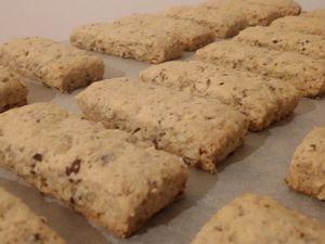 Biscuits secs aux noisettes ( sans matière grasse )