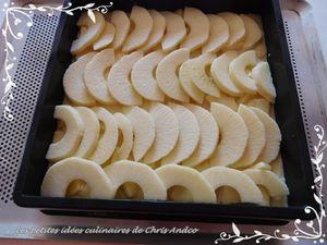 Tarte flamande aux pommes