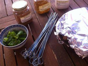 Brochettes party aux épices brochettes de poulets marinées avec ses épices .