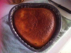 Gâteau au yaourt et ses pépites de chocolat noir aux éclats de cacao à 4 mains .